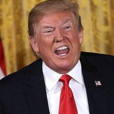 Señor Trump, ¿así que los inmigrantes 'infestamos' a EEUU?