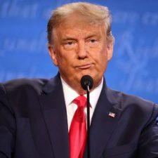 ¿Volvera Trump en el 2024?